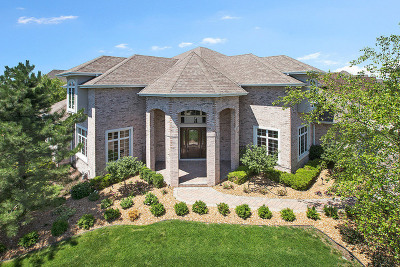 Orland Park Single Family Home For Sale: 14030 Fermoy Avenue