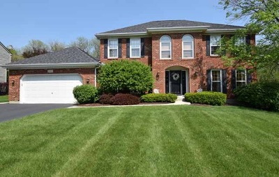 Algonquin Single Family Home For Sale: 531 Greens View Drive