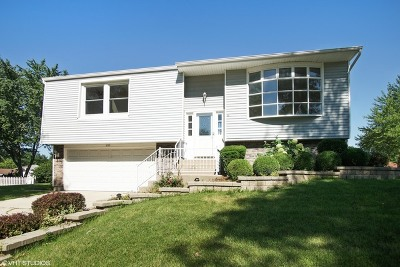 Roselle Single Family Home For Sale: 950 Summerfield Drive