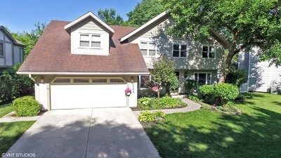 Lisle Single Family Home Contingent: 6389 Glenbrook Court