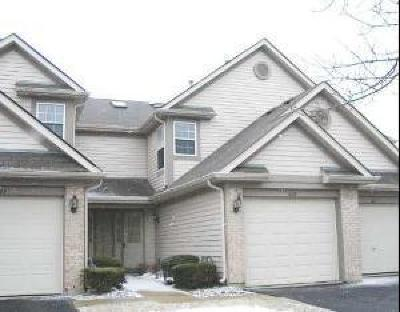 Schaumburg Condo/Townhouse For Sale: 1609 Orchard Avenue