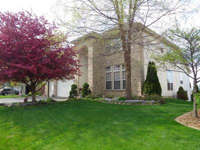 Algonquin Single Family Home For Sale: 2226 Barrett Drive