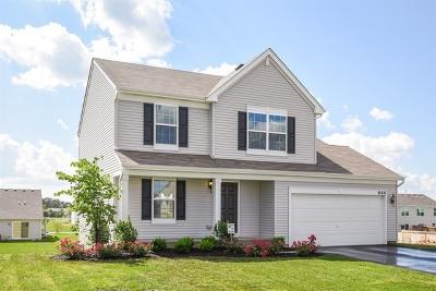 Hampshire Single Family Home For Sale: 644 Marcello Drive