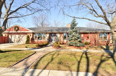 Skokie Single Family Home For Sale: 9400 Kilbourn Avenue