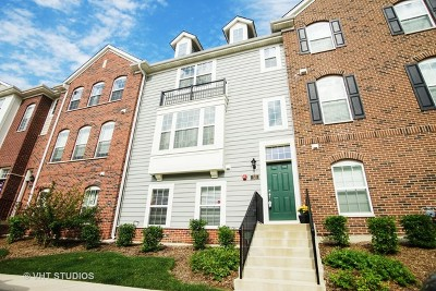 Schaumburg Condo/Townhouse For Sale: 33 Marcel Lane