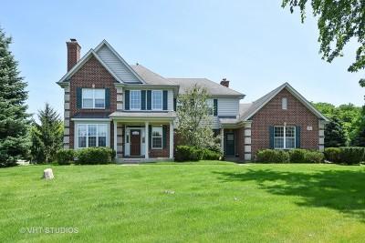 Barrington Single Family Home For Sale: 521 Pond Gate Drive