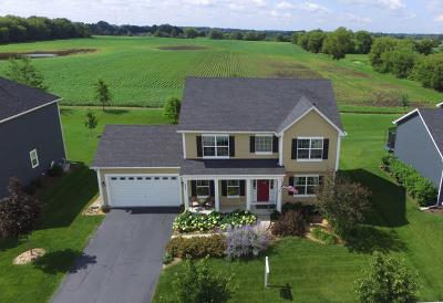 Elgin Single Family Home For Sale: 667 Slate Run