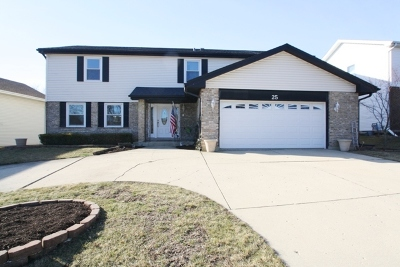 Schaumburg Single Family Home For Sale: 25 Kingsport Drive