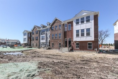 Naperville Condo/Townhouse For Sale: 804 Paisley Lot #10.01 Court