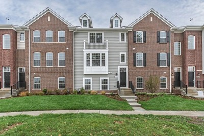 Naperville Condo/Townhouse Price Change: 808 Paisley Lot #10.03 Court