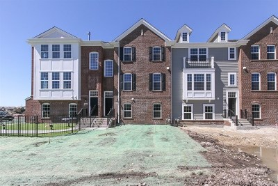 Naperville Condo/Townhouse For Sale: 806 Paisley Lot #10.02 Court