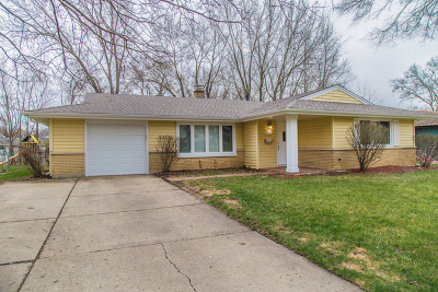 Schaumburg Single Family Home For Sale: 1327 Radcliffe Lane