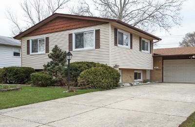 Mount Prospect Single Family Home Contingent: 1116 East Alder Lane