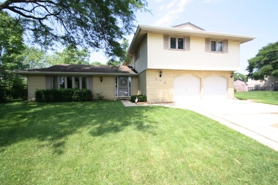 Schaumburg Single Family Home For Sale: 876 Bedford Court