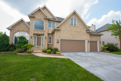 South Elgin Single Family Home For Sale: 790 Chasewood Drive