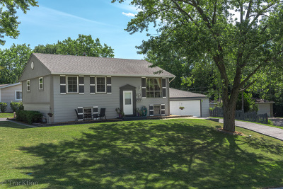 Woodridge Single Family Home Contingent: 1 Willow Court