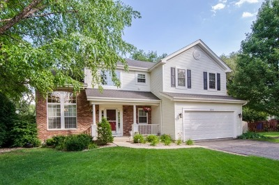 Carpentersville Single Family Home For Sale: 6012 Sanders Court