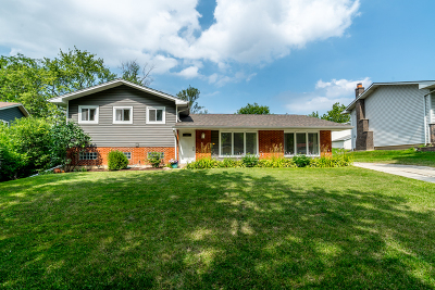 Lombard Single Family Home Contingent: 21w250 Audubon Road