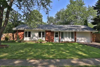 Hoffman Estates Single Family Home For Sale: 565 Olive Street