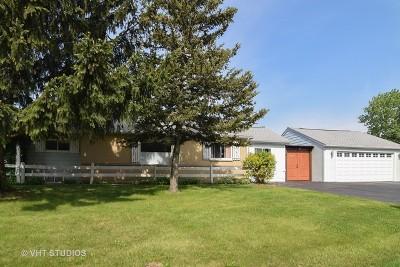 Hoffman Estates Single Family Home For Sale: 1160 Apple Street