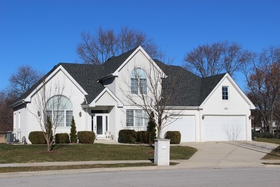 Darien Single Family Home For Sale: 1134 James Peter Court