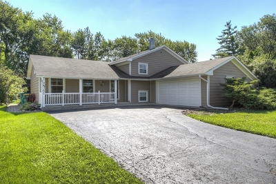 Winfield Single Family Home For Sale: 0n261 County Farm Road