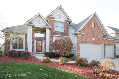 South Elgin Single Family Home For Sale: 630 Cole Drive