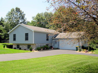 St. Charles Single Family Home For Sale: 3n460 Coulter Lane