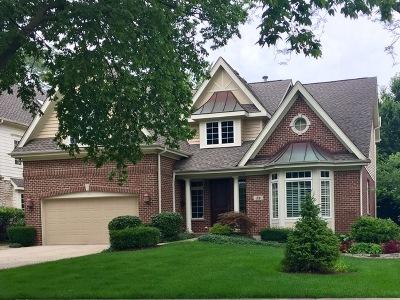 Clarendon Hills Single Family Home Contingent: 38 Chestnut Avenue