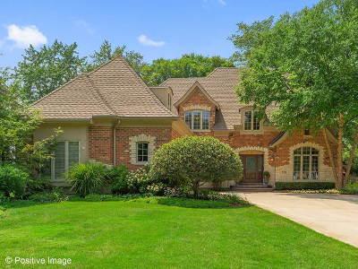 Clarendon Hills Single Family Home For Sale: 232 Grant Avenue