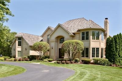 Palos Park Single Family Home For Sale: 12713 South Misty Harbour Lane
