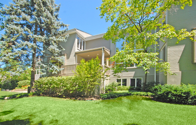 Winnetka Single Family Home For Sale: 1129 Taylorsport Lane