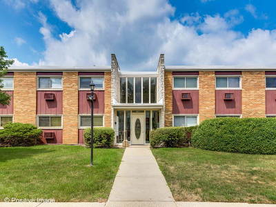 Lombard Condo/Townhouse Contingent: 120a Collen Drive #103