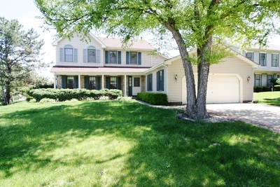Schaumburg Single Family Home For Sale: 207 Lundy Lane