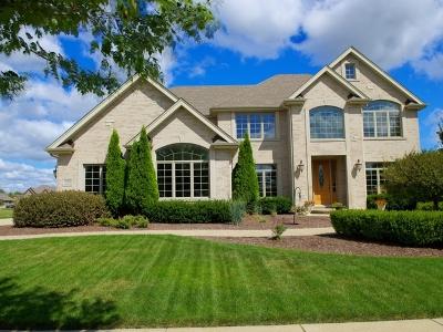 Frankfort Single Family Home For Sale: 11888 Jennifer Street