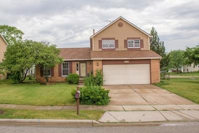 Hoffman Estates Single Family Home For Sale: 1028 John Drive