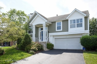 South Elgin Single Family Home Contingent: 21 Lenox Court