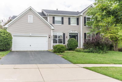 Carpentersville Single Family Home New: 3857 Parsons Road