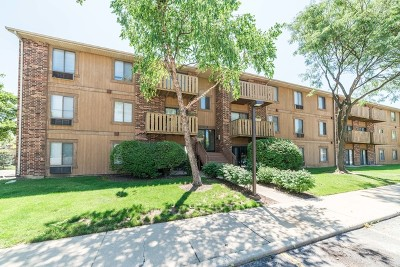 Roselle Condo/Townhouse For Sale: 746 Prescott Drive #202