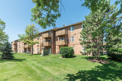 Roselle Condo/Townhouse For Sale: 746 Prescott Drive #105