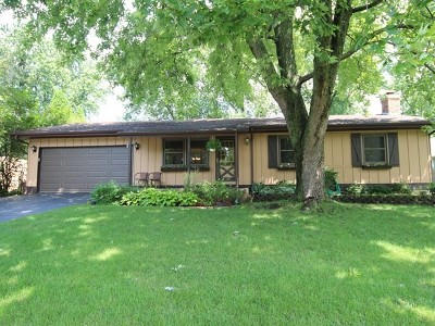 Lake Zurich Heights Single Family Home For Sale: 950 Glencoe Terrace