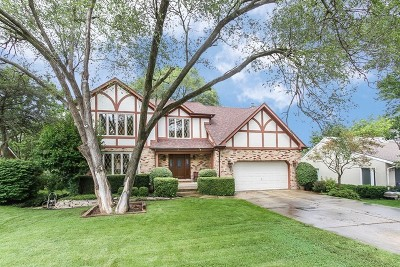 Lisle Single Family Home For Sale: 2292 Ridgewood Road