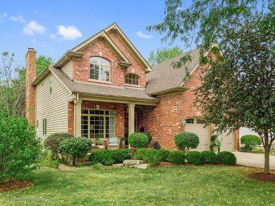 Downers Grove Single Family Home For Sale: 4636 Washington Street