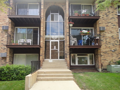 Hoffman Estates Condo/Townhouse New: 720 Hill Drive #101
