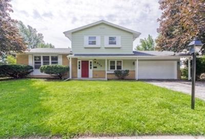 Hoffman Estates Single Family Home New: 835 Freeman Road