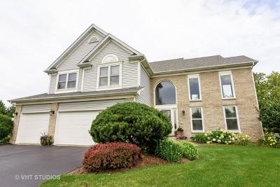 Hoffman Estates Single Family Home New: 1610 Nicholson Drive
