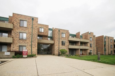 Schaumburg Condo/Townhouse New: 1919 Prairie Square #207