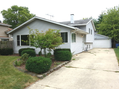 Winfield Single Family Home For Sale: 0n079 Page Street