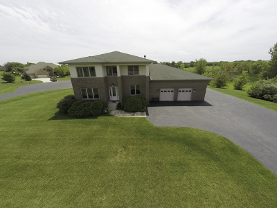 Monee Single Family Home For Sale: 25305 South Doolittle Drive