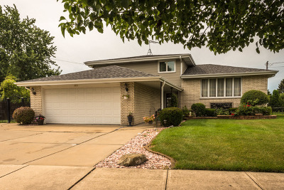 Orland Park, Tinley Park, Evergreen Park, Oak Lawn, Matteson, Olympia Fields, Flossmoor, Frankfort, Country Club Hills, Richton Park, Palos Heights, Palos Park, Palos Hills, Orland Hills, Homewood, Crestwood Single Family Home For Sale: 6615 West 89th Place